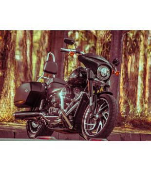 Sissy Bar Destacável King com Bagageiro, 20 pol. Harley-Davidson Softail Sport Glide - Inox Polido